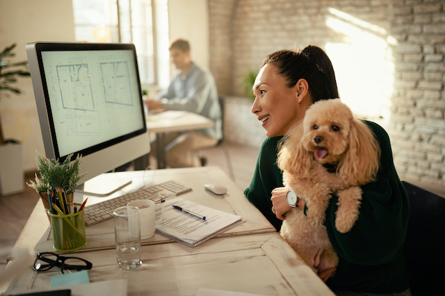Pet-related Considerations for Employers