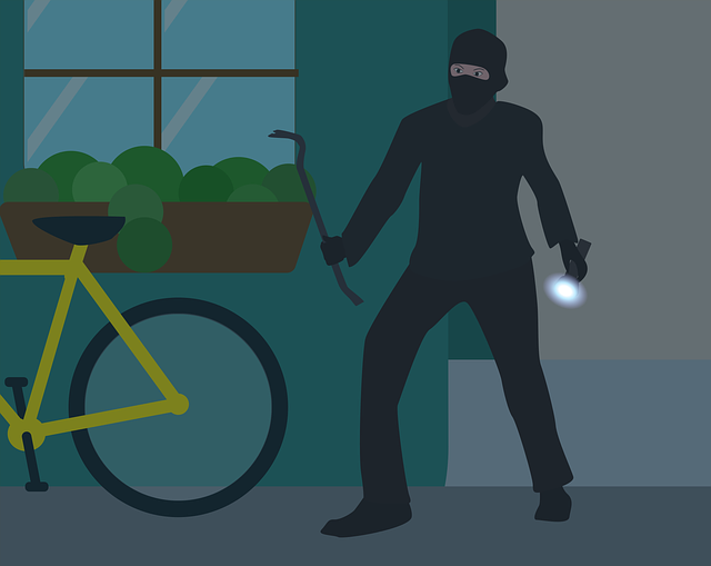 Busting the Burglars: Prevent Theft at Home